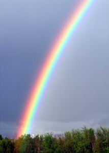 rainbow.crop