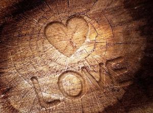 Love-Tree-Trunk