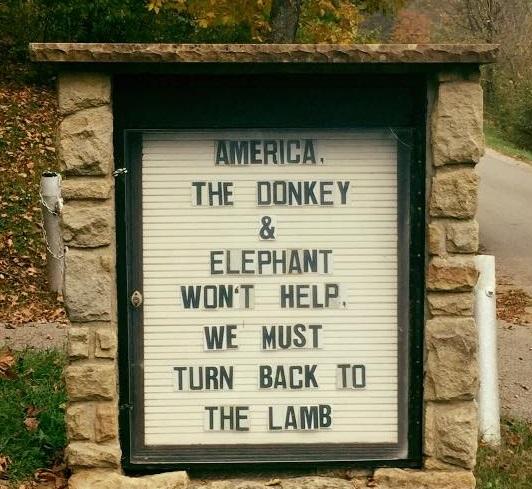 donkey-elephant-lamb